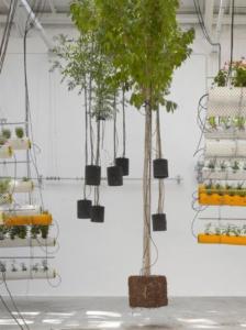 Al aire system plants