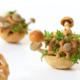 Edible growth mushrooms
