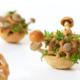 Edible growth mushrooms