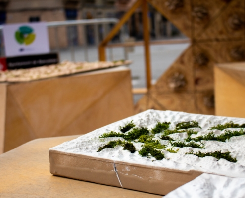 Nature-based solutions prototype